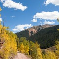 View of the San Juan Mountains and aspen trees from Clear Lake Road.- Clear Lake