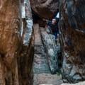 Exploring the narrows.- Fins N Things Canyoneering