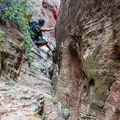 Ever narrowing as the slot deepens.- Fins N Things Canyoneering