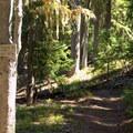 Trailhead for Indigo Extension Trail to Windy Pass Trail. - Sawtooth Mountain + Indigo Lake Hike