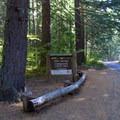 Sign for Alder Springs Campground along Highway 242.- Alder Springs Campground