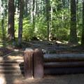 Day use picnic area in Alder Springs Campground.- Alder Springs Campground