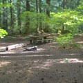 Typical campsite in Alder Springs Campground.- Alder Springs Campground