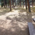 The campsites here have plenty of shade.- Buffalo Campground