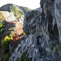 The narrow trail provides plenty of solid rock to help with the vertigo.- Whittier Ridge Trail from Norway Pass
