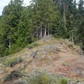 At last, the trail begins to leave the clutches of the forest and contours up a rocky ridge.- Middle Pyramid Hike