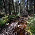 Crossing a section of Gore Creek.- Gore Lake Hike via the Gore Creek Trail
