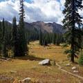 Open meadow along the Gore Creek Trail. - Gore Lake Hike via the Gore Creek Trail