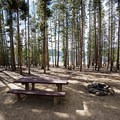 Fire pit and picnic table in a campsite at Baby Doe Campground.- Baby Doe Campground on Turquoise Lake