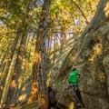 3M, 5.10a, Sully's Hangout.- Sully's Hangout Rock Climbing Crag
