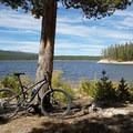 Turquoise Lake Trail.- Turquoise Lake Trail Mountain Bike Ride