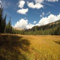 The meadow is a last spot to catch your breath before ascending the first pass.- East Vail to Frisco Thru Hike via Eccles Pass
