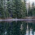 Reflections in an hidden lake near Eileen Lake.- Eileen Lake + The Husband Lake Hike