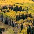 Peak fall color near Aspen.- Maroon Bells Sunrise