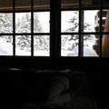 Inside the hut.- 10th Mountain Division Ski Huts
