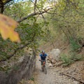 Running down Rattlesnake Gulch.- Mill Creek Pipeline Mountain Bike Trail via Rattlesnake Gluch
