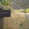 Rattlesnake Gulch Trailhead marker.- Mill Creek Pipeline Mountain Bike Trail via Rattlesnake Gluch