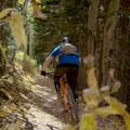 Descending on the Big Water Trail.- Dog Lake Mountain Bike Ride: Great Western Trail to Big Water Trail