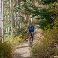 Climbing through pine and aspen.- Dog Lake Mountain Bike Ride: Great Western Trail to Big Water Trail
