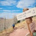 Trailhead marker off of the crest.- Desolation Lake Mountain Bike Ride