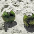 Fresh-cut coconuts sold at the beach. - Ipanema Beach