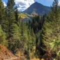 Mount Kessler (10,403 ft) looms overhead as you begin the ascent, but you'll have to turn around to see it.- Butler Fork Trail Hike