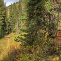 The Mount Olympus Wilderness. You can access many great areas from this trail.- Butler Fork Trail Hike