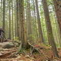 The end of CBC has some steeps. - Mount Seymour Trails: CBC