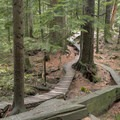 Old-school wood features.- Mount Seymour Trails: CBC