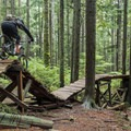 Most features have easier route options.- Mount Seymour Trails: CBC
