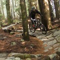 The trail has great flow up top.- Mount Seymour Trails: CBC