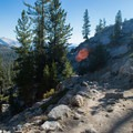 The trail to May Lake.- May Lake Trail Hike