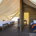 Glamping at its finest.- The Conestoga Ranch