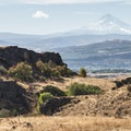 View west to Mount Hood (11,249 ft) from Columbia Hills Historical State Park.- Columbia Hills Historical State Park