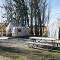 Campground tents at Columbia Hills Historical State Park.- Columbia Hills Historical State Park