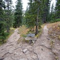 Fork in the trail: left goes to Cathedral Lake and right to Electric Pass. - Cathedral Lake Trail