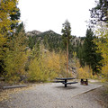 A campsite in Parry Peak Campground.- Parry Peak Campground