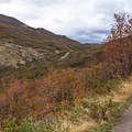 Lots of terrain to enjoy.- Corner Canyon Trail System
