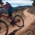 Speed is your friend down here.- Kokopelli Loops Mountain Bike Trails: Horsethief Bench