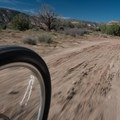 Much of the trail is wide in sections, allowing for plenty of speed.- Kokopelli Loops Mountain Bike Trails: Mary's Loop