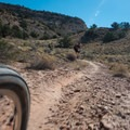 The trail is fast and tightly packed in most sections.- Kokopelli Loops Mountain Bike Trails: Steve's Loop