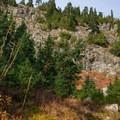 The junction to Elsay Lake is below Mount Seymour's First Peak.- Elsay Lake Hiking Trail