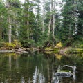 The trail passes a couple of smaller lakes on the way to Elsay Lake.- Elsay Lake Hiking Trail