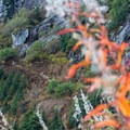 Great Fall colors in the valley.- Elsay Lake Hiking Trail