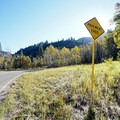 Pavement ends. - Kebler Pass Scenic Road