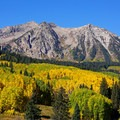 Fall color on Kebler Pass. - Kebler Pass Scenic Road