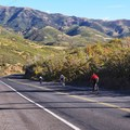 The fun part, coming down from the summit.- Emigration Canyon Road Cycling