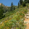 The trail up Long Canyon.- Lake Anna via Long Canyon