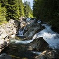 The Snoqualmie River plunges into Weeks Falls in Olallie State Park.- Weeks Falls