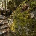 Just before the falls.- Nairn Falls Hike